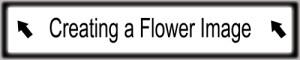 04_Flower